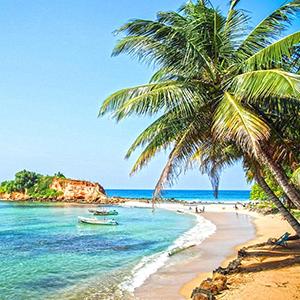 1 Day Sri Lanka East Coast Tour