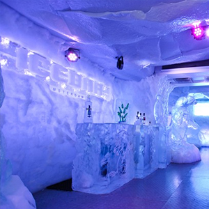 Amsterdam Icebar and 1 Hour Canal Cruise
