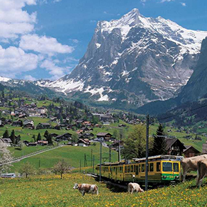 Full Day Grindelwald & Interlaken SIC