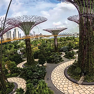 HALF DAY GARDENS BY THE BAY