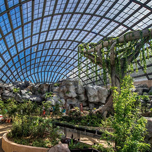 Half day Botanical Garden & Butterfly Farm