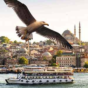 Istanbul Golden Horn Bus Tour & Bosphorus Cruise