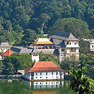 Kandy Full-Day Private Tour by Car from Colombo